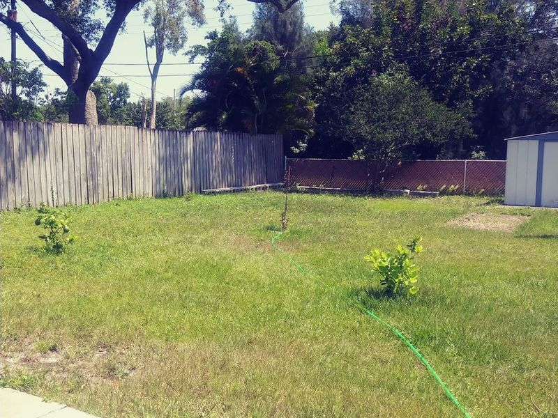 next to two main drags: Park Boulevard and 66th S in Pinellas Park, FL
