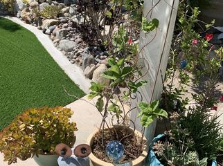 Lovely Home to Share in N Fontana , CA