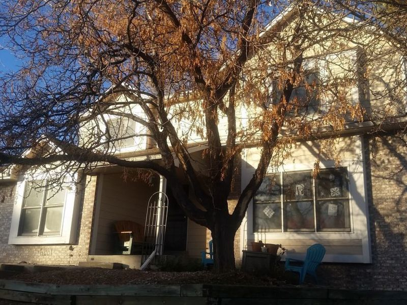 Two rooms and private bath available in a home in Littleton, CO