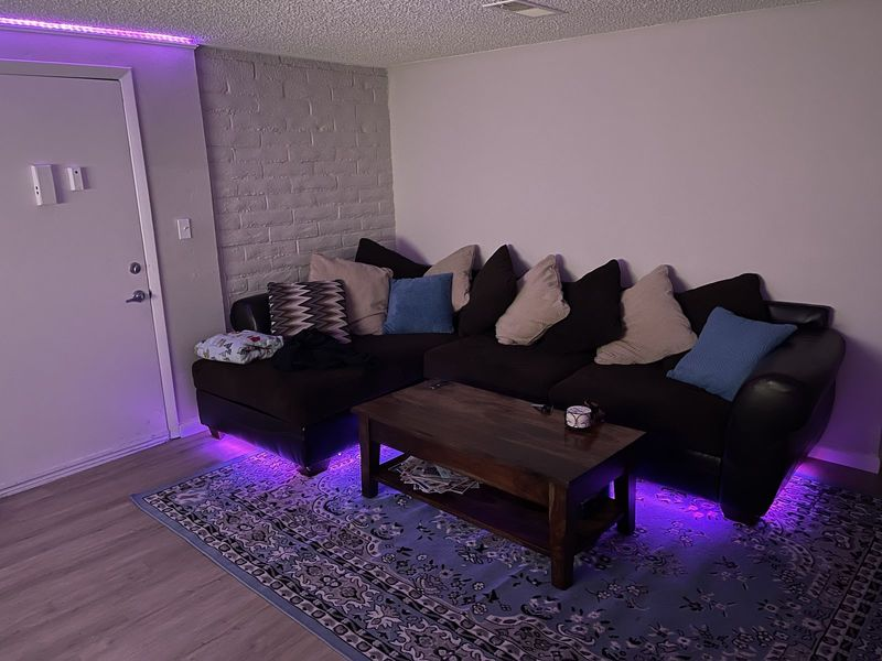Cool Apartment in Lakewood with chill people in Lakewood, CO