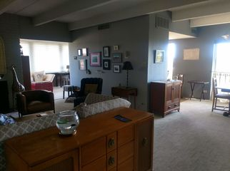Share Quality Condo with Frequent Traveler and Cat in DENVER, CO