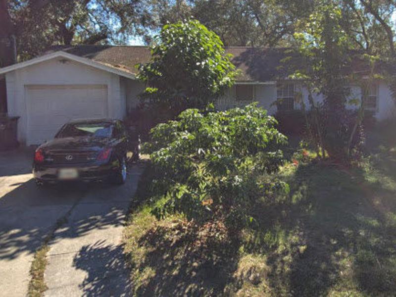 Ultra quiet home near USF , Tampa FL. in Tampa, FL