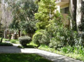 Quite 2bd, 2bth apartment , quite complex. in San Jose, CA
